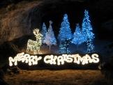 クリスマス Z2