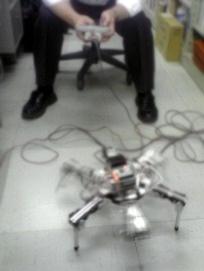 六足歩行ロボット調整中