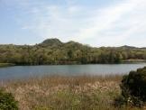 希望が丘の池