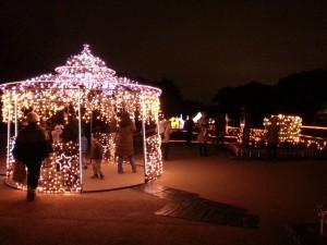 20131222_京都府立植物園のイルミネーション4