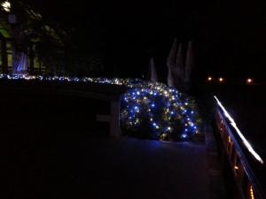20131222_京都府立植物園のイルミネーション3
