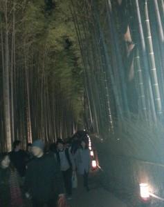 20131223_嵐山の竹林のトンネル