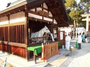 20140103_上賀茂神社の神馬[1]