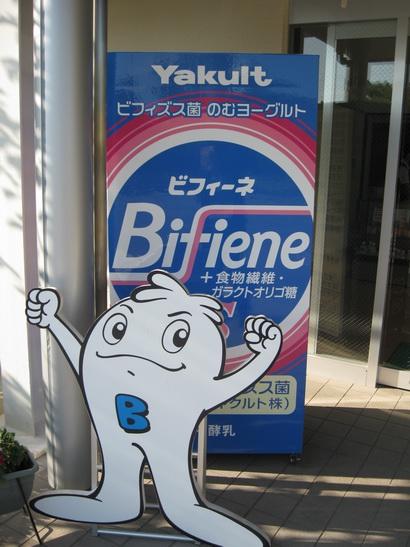 ヤクルト京都工場ビフィーネの置物