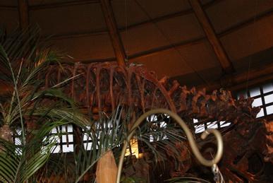 USJジュラシックパークレストランの恐竜骨