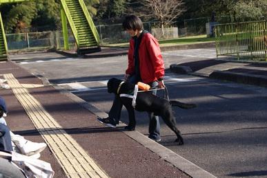 関西盲導犬協会見学会デモ」