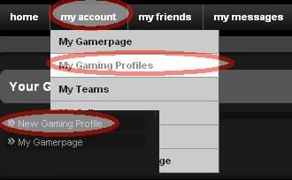 MMOS.COMでゲームプロフィールの設定画面