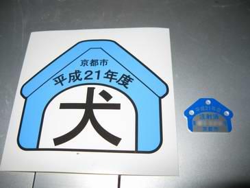 21年度の京都市狂犬病注射済の鑑札