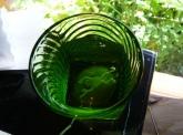 蛙吉のグラス