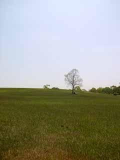 希望が丘公園